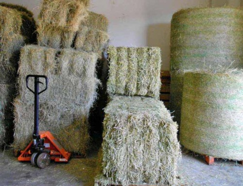 Blocks, Bales and Rounds