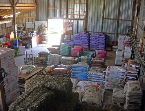 North Store Hay & Feed